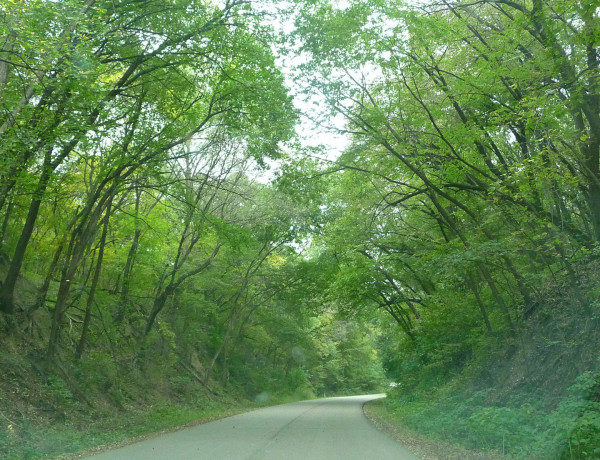 State Park Road